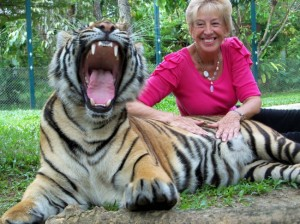 Thailand-Tiger-Park-reopens-after-mauling-650x487